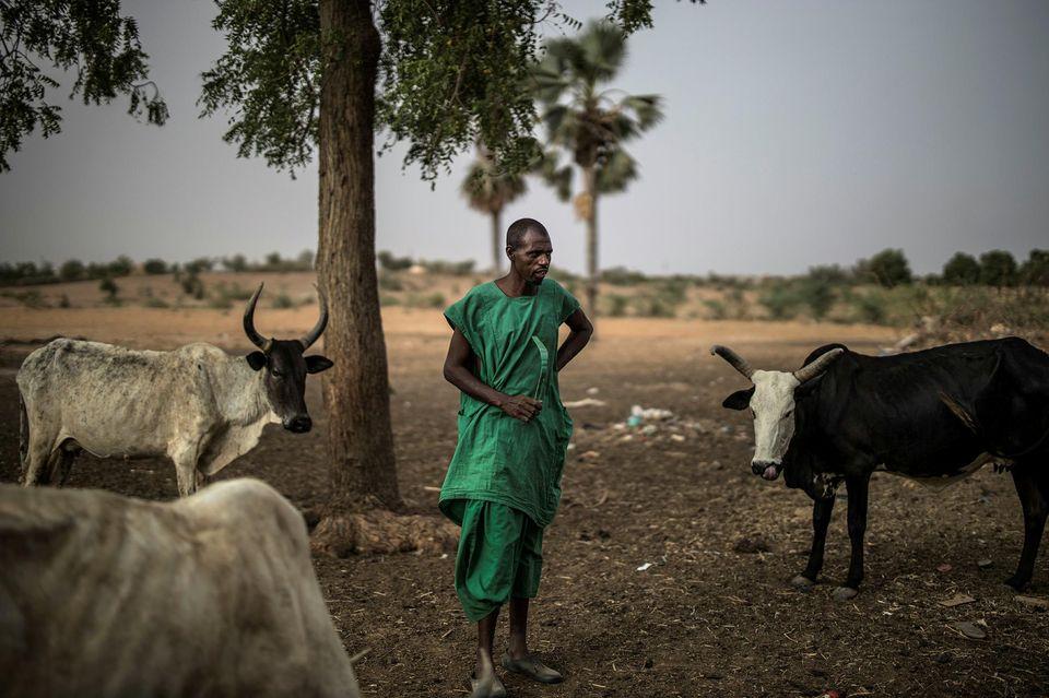 Mali : Peuls et Dogons, des frères devenus ennemis